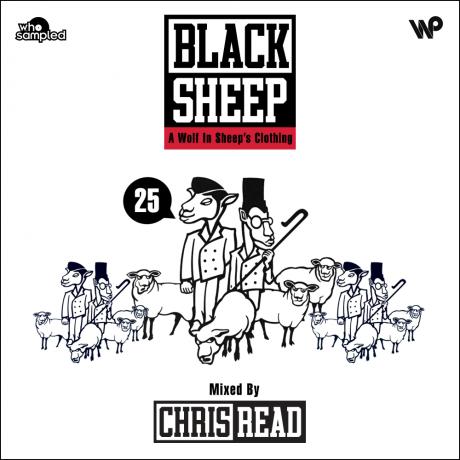 black-sheep-25-final