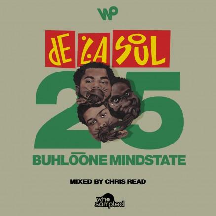 DLS-Buhloone-25-Mix-v3